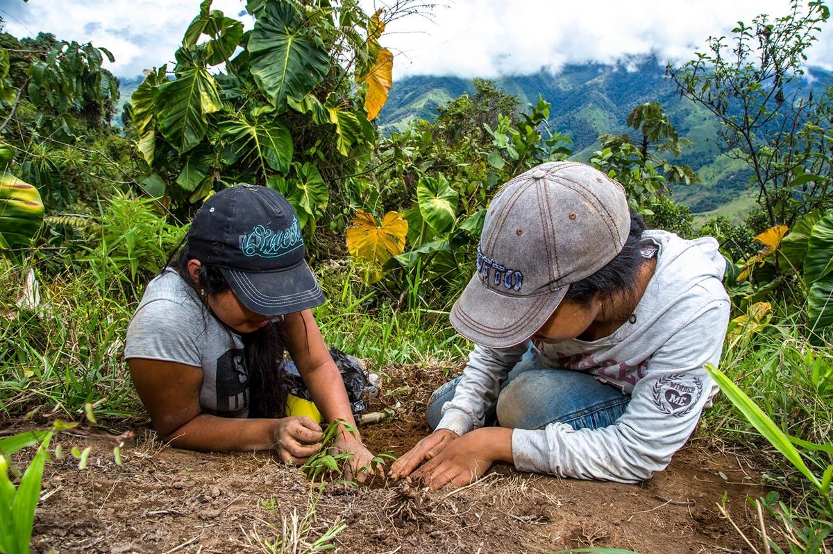 Nuestro programa ReverdeC llega a Antioquia